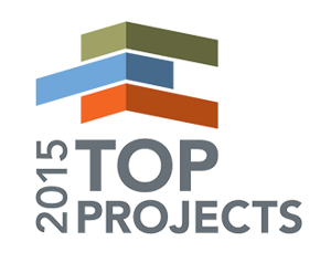 Top-projects-2015-logo-colour-01.png